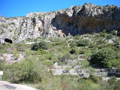 PLA -DE  PETRACOS pinturas rupestres que hay en los abrigos de la zona.